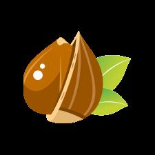 אגוז הלוז